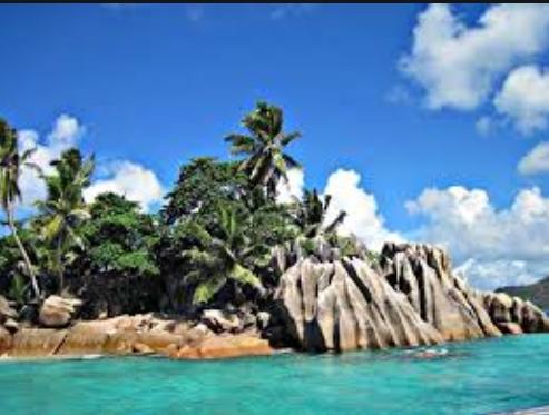 塞舌尔群岛公司设置要求与特点