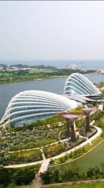 注銷新加坡公司條件