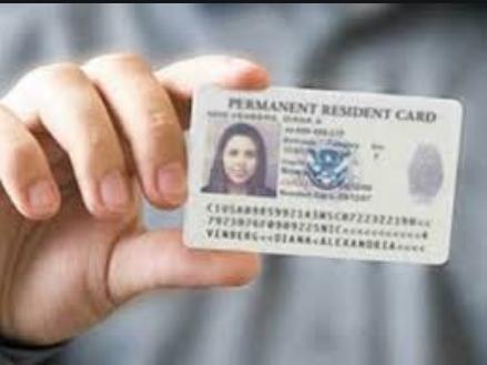 美国大改移民政策,优秀留学生或可毕业直接拿绿卡