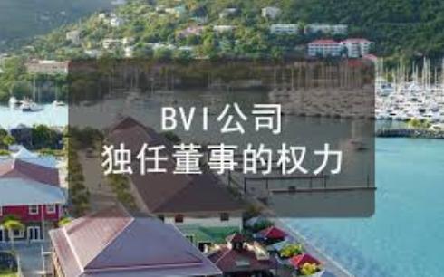 BVI公司独任董事的权力